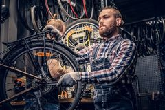 Mechanic fixing rear derailleur from a bicycle. stock images