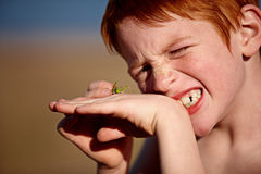 Red head boy with grasshopper Royalty Free Stock Images