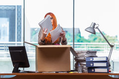 The red head woman moving to new office packing her belongings Stock Photo
