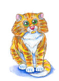 Red-headed cat. Illustration red-headed cat ,made with watercolor . on white background Royalty Free Stock Image
