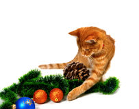 Red-headed kitten play with Christmas tinsel, Christmas-tree bal Stock Image