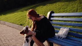 Red headed, loving woman is caressing her spaniel dog while sitting on blue bench in green park. Cute litthle dog. Running to the owner. Happiness and love stock footage