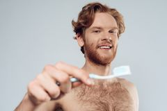 Red headed man is holding toothbrush. With toothpaste. Male hygiene. Morning hygiene procedures. Isolated on grey background Royalty Free Stock Images