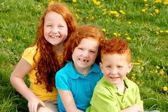Red headed siblings portrait. A portrait of three red headed siblings on grass Stock Image