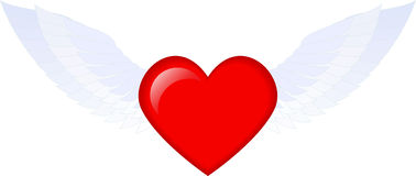 Red heart. Lovely red heart with wings. the heart of angel. Vector illustration Royalty Free Stock Image