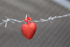 Red heart on a background of barbed wire Royalty Free Stock Images