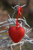 Red heart on a background of barbed wire Stock Photo