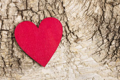 Red heart on bark background. Symbol of love Royalty Free Stock Photo