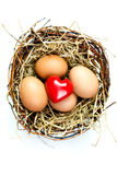 Red heart in a basket Royalty Free Stock Photo