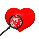 Red heart with black magniglass Royalty Free Stock Photography