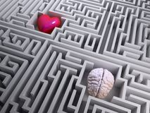 Red heart and brain in the labyrinth maze Stock Image