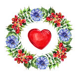 Red  heart, Campsis, cornflower blue  flowers wreath ,  watercolor Stock Images