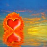 Red heart in center orange flower Stock Photo