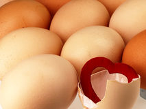 Red heart comes from a broken egg. Stock Photo