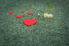 Red heart and cute flower on the green walking path backgrounds with copy space stock photo