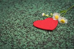 Red heart and cute flower on the green walking path backgrounds with copy space royalty free stock image