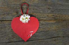 Red heart and daisies on rustic wood Royalty Free Stock Image
