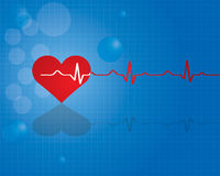 Red heart with ekg  - medical design. Stock Photo