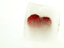 Red heart embedded in ice. Stock Photos