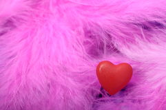 Red heart on feathers Royalty Free Stock Photo