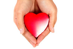 Red heart in female hands. Female hands taking care of red heart Royalty Free Stock Photography