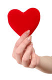 Red heart in female hands. On a white background Stock Photos
