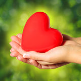Red heart in female hands, over Nature Green Sunny Royalty Free Stock Image