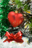 Red heart on fir branch Stock Photo