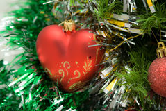 Red heart on fir branch Royalty Free Stock Images