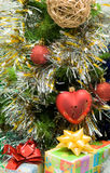 Red heart on fir branch Stock Photography
