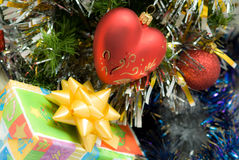 Red heart on fir branch Stock Images