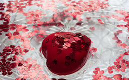 Red heart floats in water. Valentine`s Day card. A big red heart. Lots of little red hearts. They all float in water Stock Photos