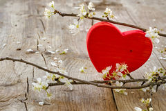 Red heart flower brancheson rustic wooden background, love symbo Stock Image
