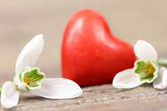 Red heart with flower Royalty Free Stock Photo