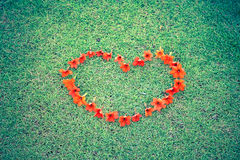 Red heart from flowers on grass Stock Images