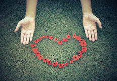Red heart from flowers on grass Royalty Free Stock Photography