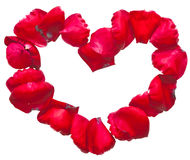 Red heart frame. Made by rose petals Stock Images
