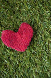 Red heart on grass background Royalty Free Stock Images