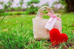 Red heart on the grass Stock Images