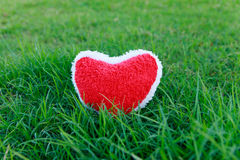 Red Heart on grass. Green royalty free stock photography