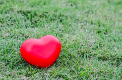Red heart on grass Royalty Free Stock Photo