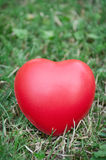 Red heart on grass Stock Photos