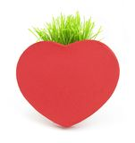 Red heart with grass stalk Royalty Free Stock Images