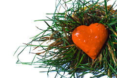 Red heart in  grass Royalty Free Stock Photos