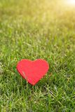 Red heart on the green grass backgrounds with copy space royalty free stock photography