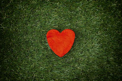 Red heart on a green grass Stock Image