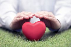 Red heart on green grass covered by hands stock photos