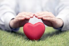 Red heart on green grass covered by hands royalty free stock photography