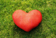 Red heart in green grass Stock Photos