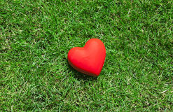 Red heart on green grass Stock Image